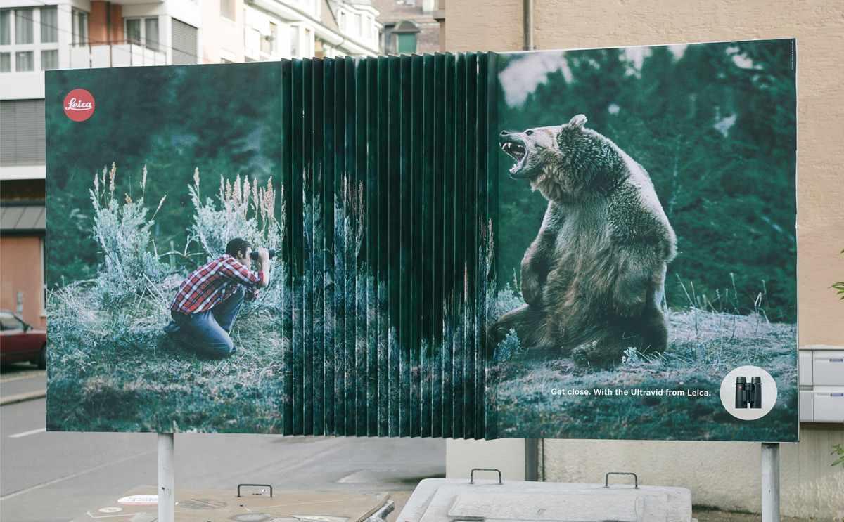 Leica_Bear